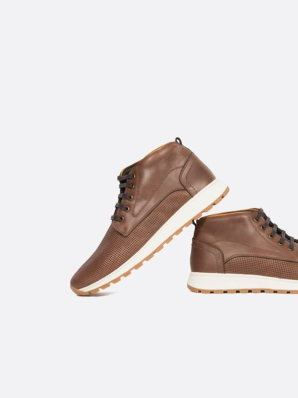 FLAX02-AVE-(6)